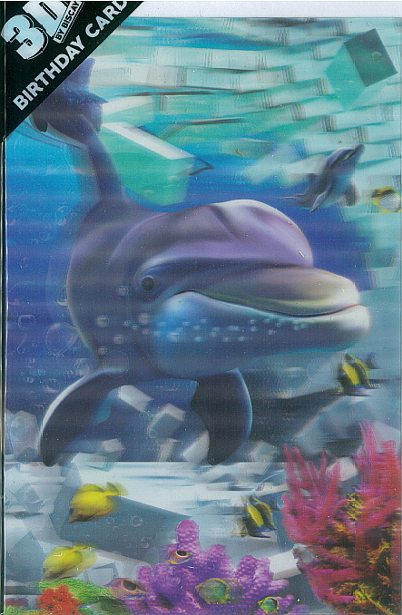 3D Card Dolphin Wall