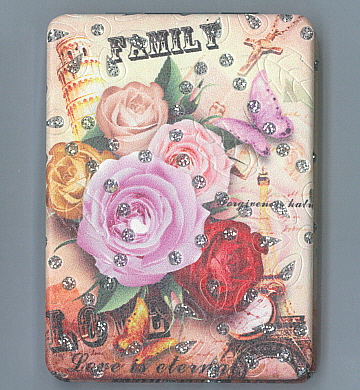 Hand Held Mirror Family and Roses